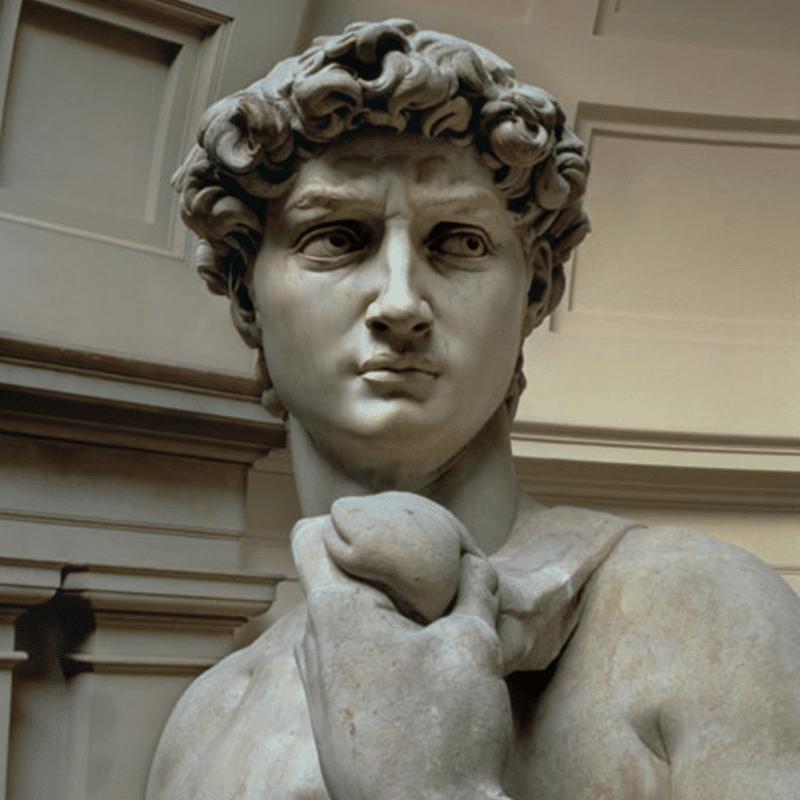 Vorlage für Vektorgrafik von Michelangelos David