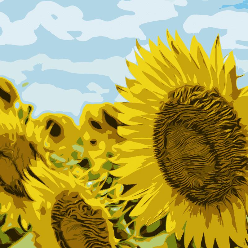 Vektorgrafik von Sunflowers